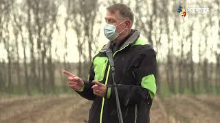 Iohannis: Nu a măsluit nimeni datele despre pandemie nici înainte, nici după alegeri