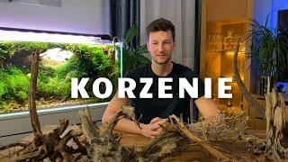 Kamienie, korzenie - opracowanie Łukasza Ciszkowskiego