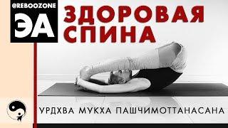 Как избавиться от боли в спине и обрести стройные ноги с помощью асан Йоги?