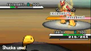 Shuckle  - (Pokémon) - Pokemon Black and White Wifi Battle #26 - Rollout Shuckle Sweep
