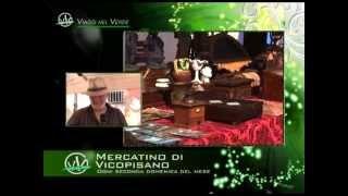 preview picture of video 'Mercatino del Collezionismo, Vicopisano (PI) - Viaggi nel Verde'