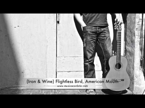 Iron Wine Flightless Bird American Mouth Fingerstyle Jason