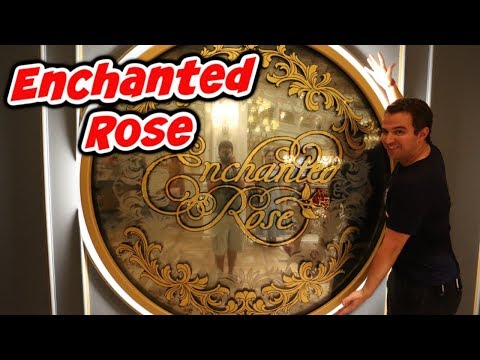 Enchanted Rose | Testing 4K on the Canon M6 Mark II and Can't Stay Away from Captain Cooks
