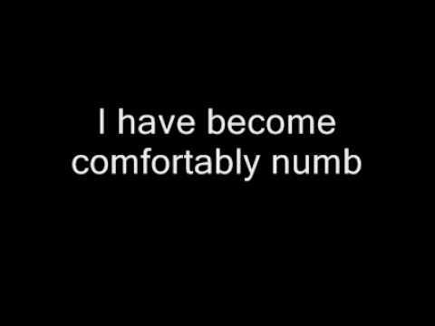 Pink Floyd - Comfortably Numb With Lyrics