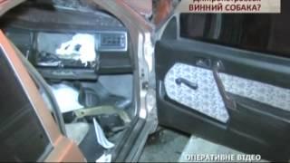 В Днепропетровске был суд по скандальному ДТП с участием чиновника - Чрезвычайные новости, 03.11