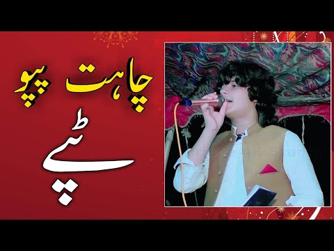 Chahat Papu New Pashto Song | New Tappy Tappaezy 2019