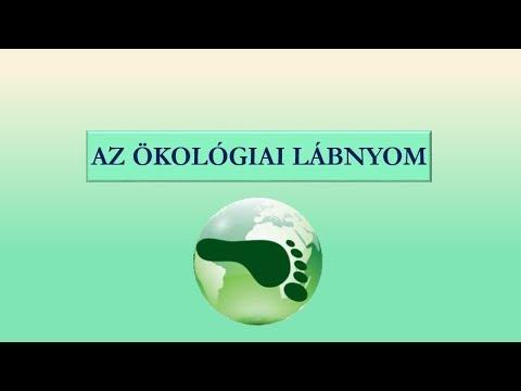 Refractive error (myopia hyperopia astigmatism)