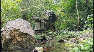 Survival in the tropical rainforest, ep 22, build most secret beautiful huts