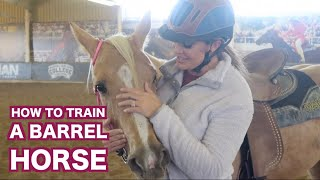 HOW TO TRAIN A BARREL HORSE (LESSON)
