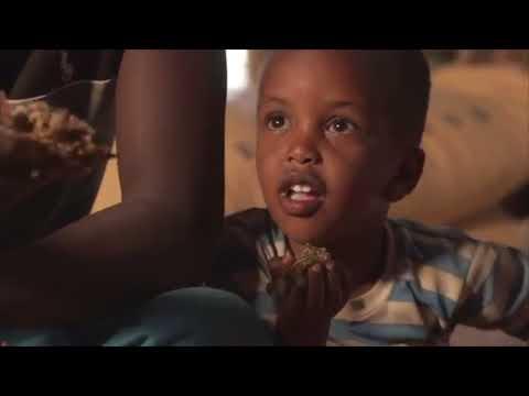 Női genitális papilloma kezelés