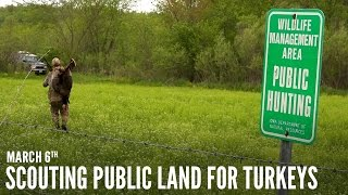 Scouting Public Land - Turkey Calling Tips | Spring Thunder