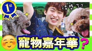 【開心🎊首次體驗】MUFFIN和BROWNIE得獎了!?🐶初次帶狗狗去「寵物嘉年華」!(中字)