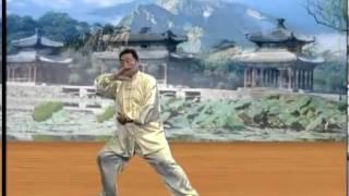Laojia yi lu complete - Chen Xiaowang - Chen Taijiquan