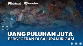 Viral Video Uang Puluhan Juta Berceceran di Saluran Irigasi, Warga Kumpulkan hingga Rp23 Juta