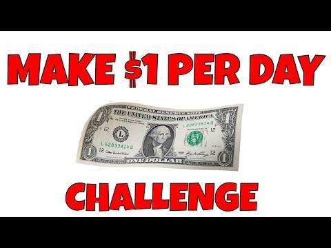 The Make $1 Per Day Challenge - Starting Entrepreneurship with Baby Steps