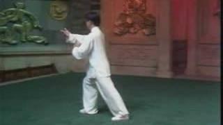 Forme 49 du style Yang – 2ème partie