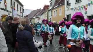 preview picture of video 'Weiberfasching Umzug Wittichenau 2013'