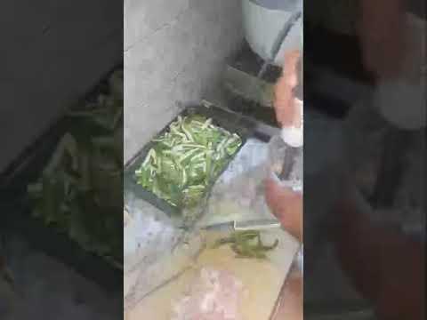 Recipe of Fry Bhindi ( with Fun ) #fun #Bhindi #cooking #recipe
