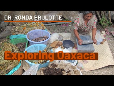 Exploring Oaxaca with Dr. Ronda Brulotte