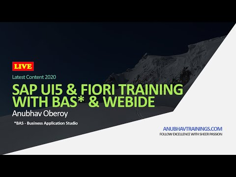 Live Demo SAP UI5 and Fiori Training with Business Application ...