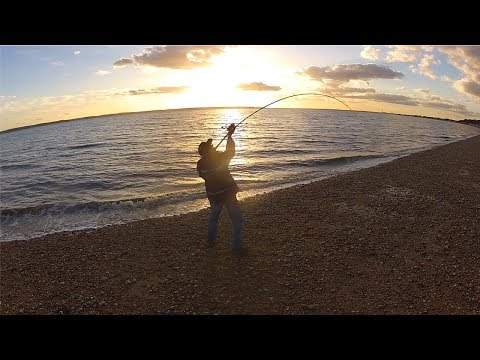 Beginners Beach Fishing Tips – Rigs, Bait, Tackle & Tactics