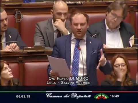 VIA LIBERA DELLA CAMERA ALLA LEGITTIMA DIFESA: L'INTERVENTO DELL'ON. FLAVIO DI MURO