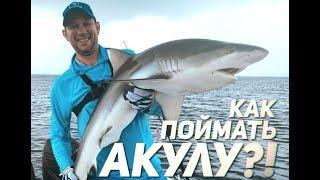 Рыбалка в море на акулу