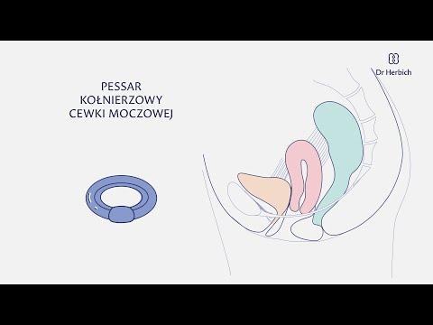Jest uważany za normalny rozmiar penisa