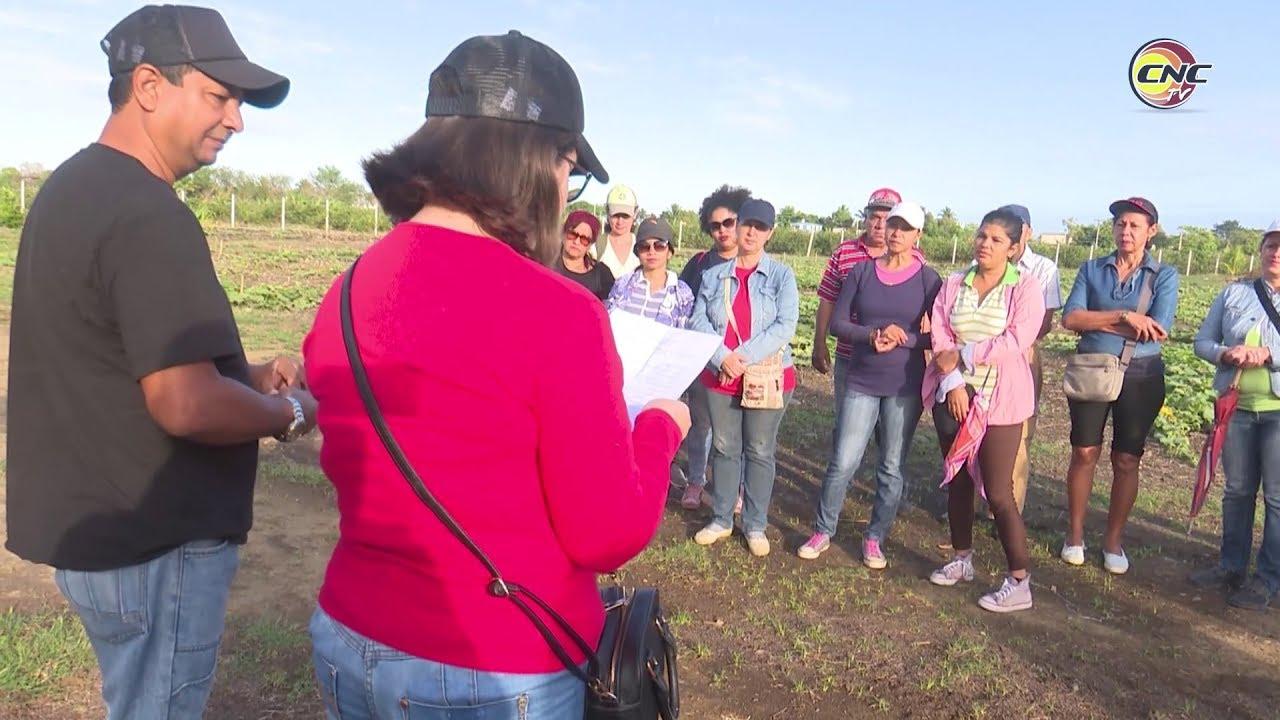 UPEC en Granma realiza diversas actividades por el Día de la Prensa Cubana