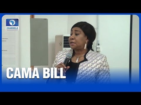 CAC Optimistic Proposed CAMA Bill Will Strengthen Company Admin
