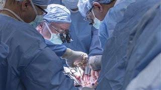 First Uterus Transplant in U.S. Fails