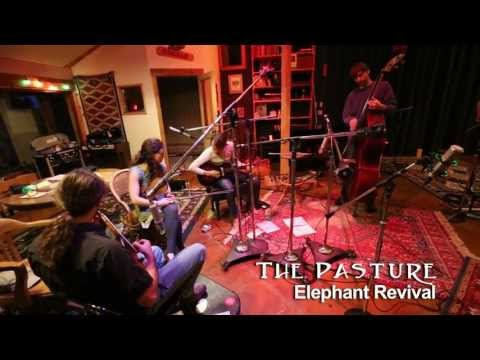 "Elephant Revival - ""The Pasture"""