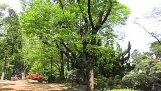 富士森公園のイメージ
