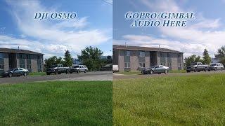 Dji Osmo Vs GoPro W Feiyu Tech Gimbal