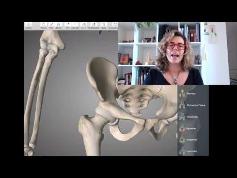 Fármacos anti-inflamatorios en osteocondrosis de la cervical y torácica