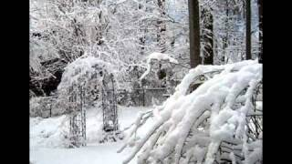 In The Bleak Midwinter.wmv