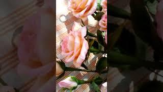 Букет кустовых роз.Холодный фарфор.Ручная работа. фото