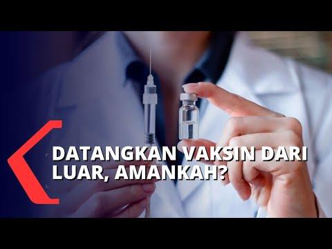 vaksin dikebut november ketua tim riset corona pemerintah harus transparan informasi