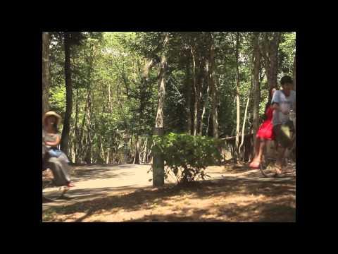 Au revoir l'été de Koji Fukada - Bande-annonce
