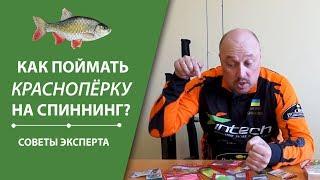 Как поймать краснопёрку на спиннинг? | Cоветы эксперта