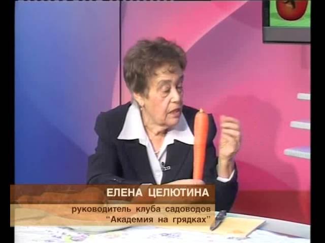 «Академия нагрядках» от 30.01.2013 г.