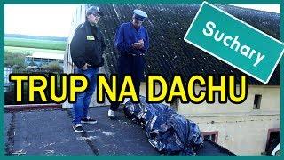 TRUP NA DACHU || Suchary#26
