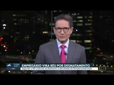 Empresário vira réu por desmatamento em São Lourenço da Serra