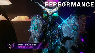 """Butterfly sings """"Don't Know Why"""" by Norah Jones 