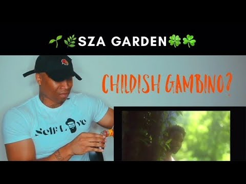 Sza - Garden (Say It Like Dat) (Official Video) ft Childish Gambino REACTION!!! mp3