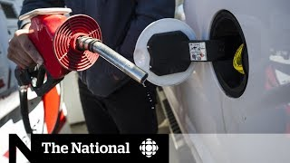 Carbon tax battle escalates in Federal Court