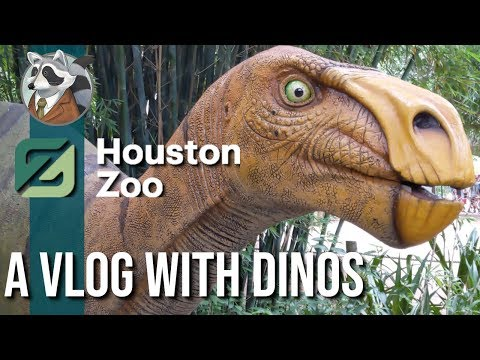 A Vlog With Dinos | Houston Zoo | 6.11.19