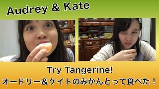 Audrey & Kate Try Tangerine オードリー&ケイト・みかんとって食べみた!