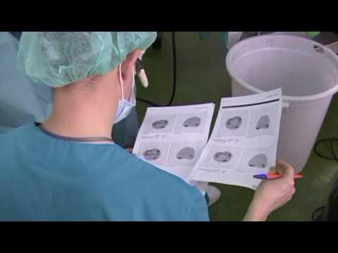Лечение хронического простатита фитотерапией