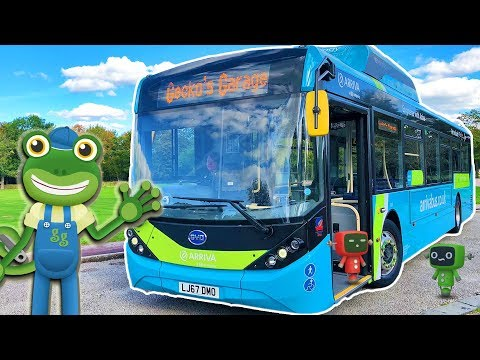 Bus Videos For Children | Gecko's Real Vehicles